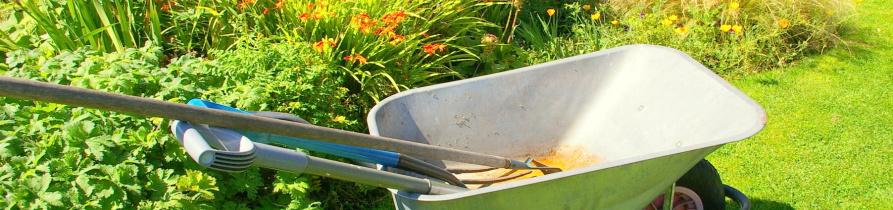Jardines temporales plantas de alquiler mantenimiento for Jardineria navarro